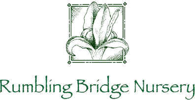 Rumbling Bridge Nursery