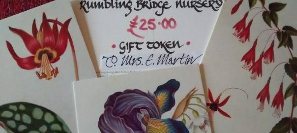 rumbling bridge nursery gift voucher